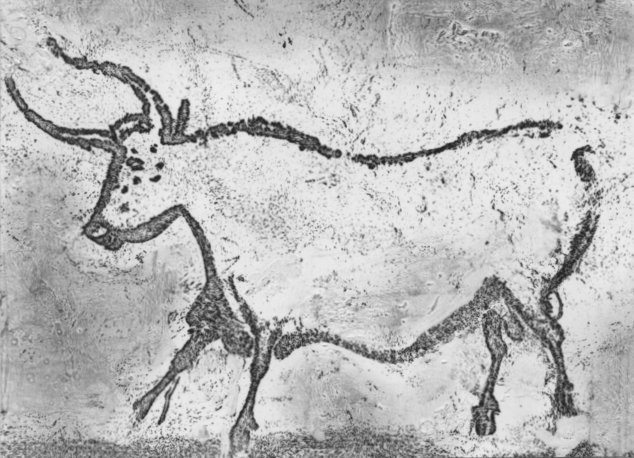 about the aurochs